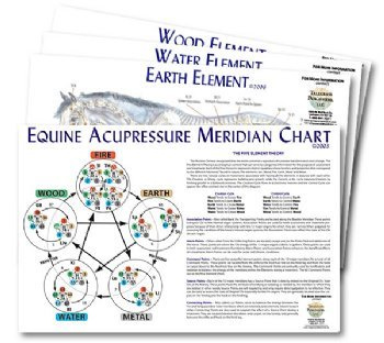 Equine 5-Element Chart Set (4 charts)