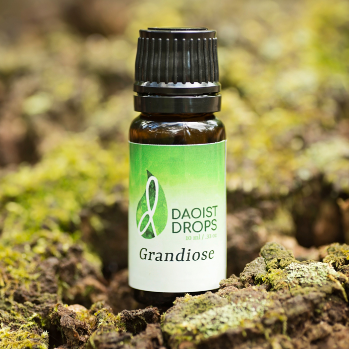 Grandiose Essential Oil Blend
