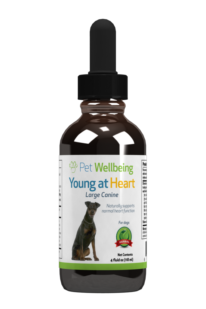 Young at Heart, 4oz for Dogs
