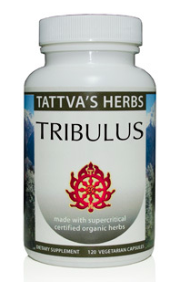 Tribulus  - Supercritical Organic, 120 cap