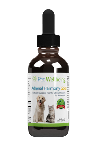 Adrenal Harmony Gold for Dogs, 2oz