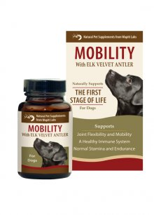 Dog Mobility Pet Supplement, 120 Tablet (expires 4-30-21)