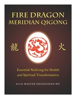 Fire Dragon Meridian Qigong DVD