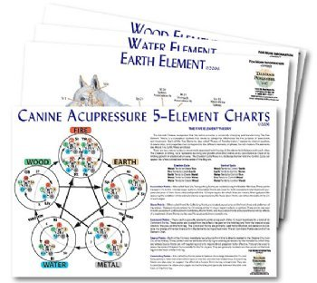 Canine 5-Element Chart Set (4 charts)