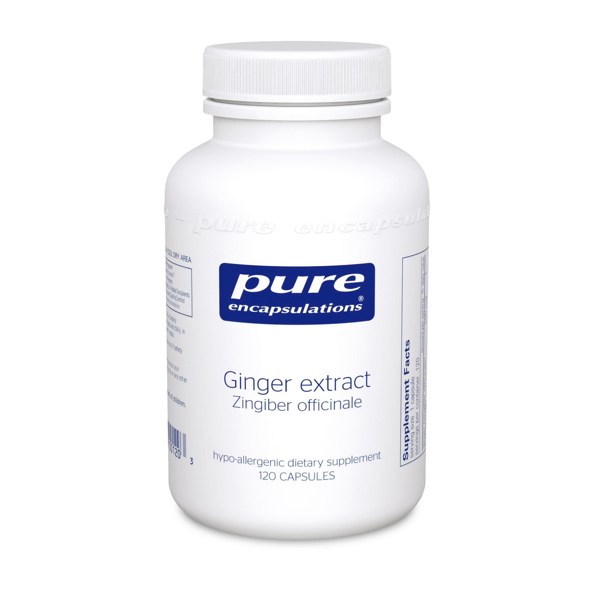 Ginger Extract (120 capsules)