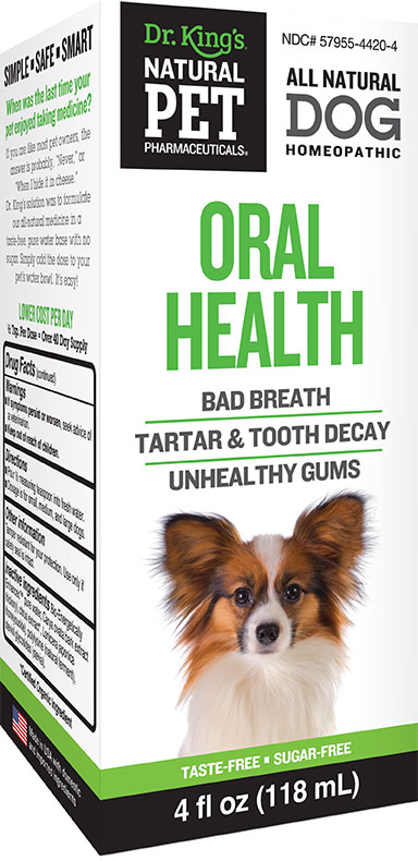 Dog: Oral Health