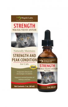 Cat Strength Formula, 2 oz. Glycerite (Expires 3/20)