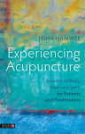 Experiencing Acupuncture, Book