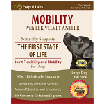 Dog Mobility Trial Pack for Large Dogs