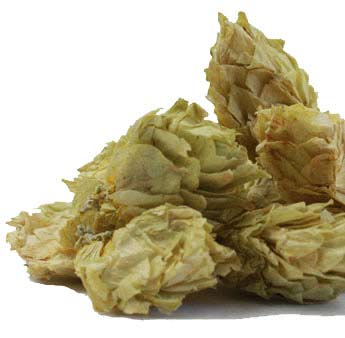 Hops Flowers (Humulus lupulus), Whole Organic