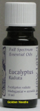 Eucalyptus (radiata) Essential Oil