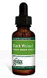 Black Walnut Fresh Green Hulls, 2 oz