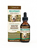 Dog Recuperate Formula, 2 oz. (Expires 3/20)