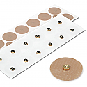 Accu-Band 6000 Rec Magnets, Gold Plated