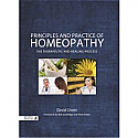Principles and Practice of Homeopathy:  The Therapeutic and Healing Process by David Owen