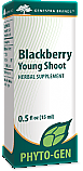 Blackberry Young Shoot
